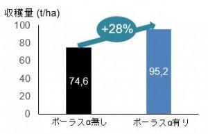 収穫量28%増加を実現
