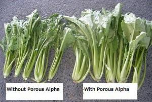 Comparison of crop size